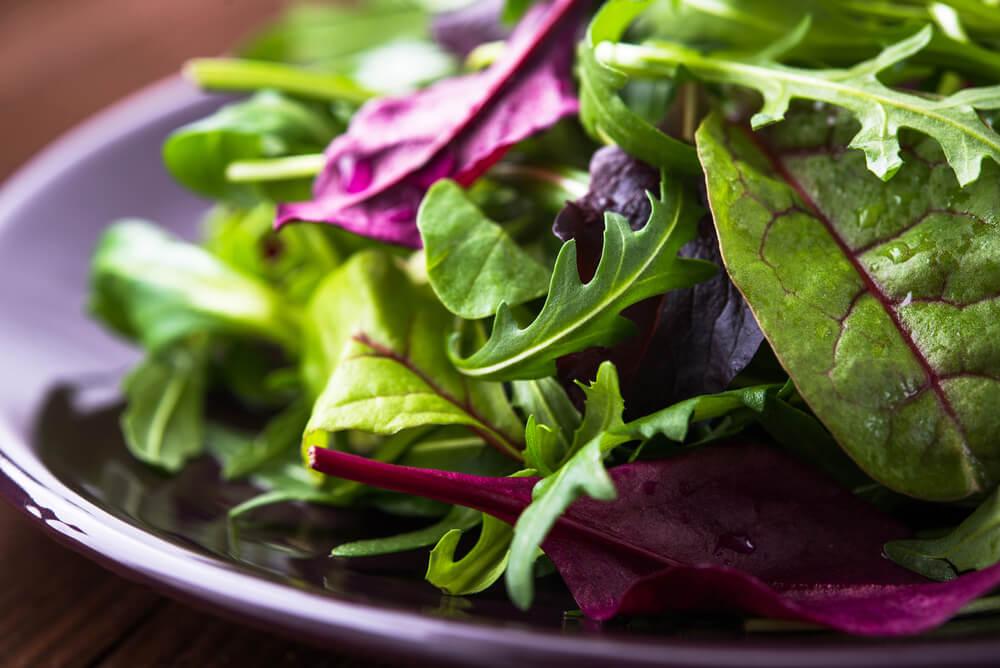 Sirtfood Diet飲食法-輕鬆有效的快速減肥法-芝麻菜-火箭菜