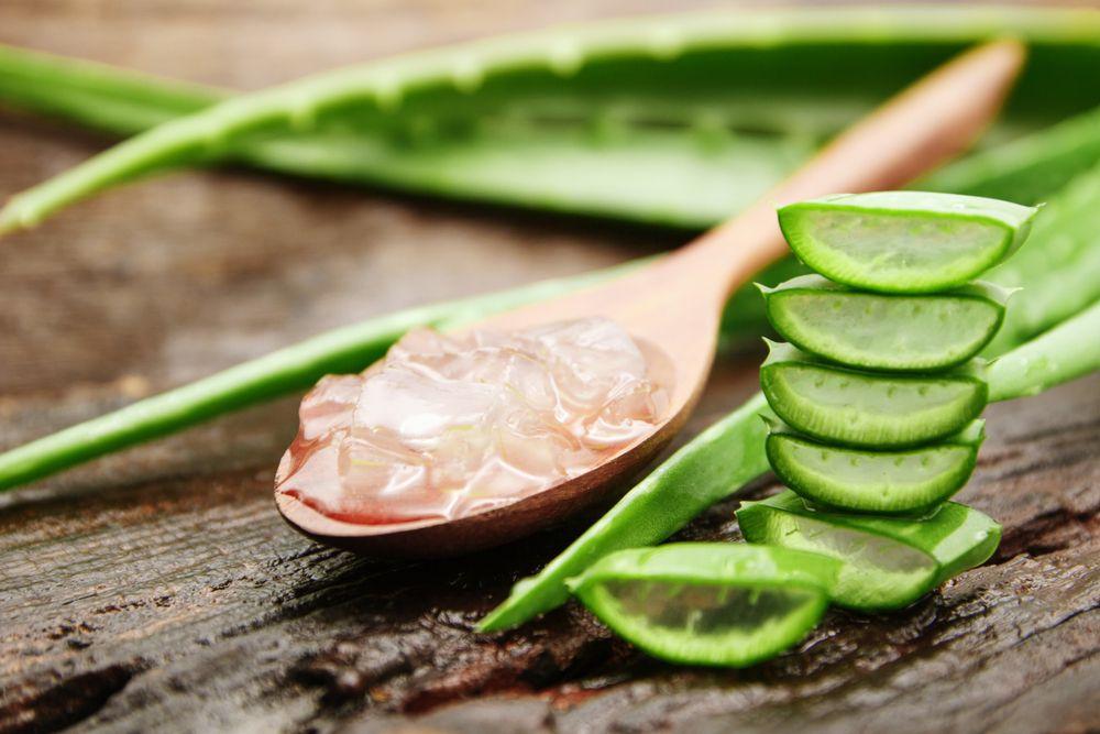 蘆薈對暗瘡有甚麼功效?